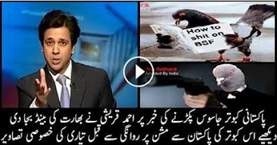 Ahmed Qureshi Blasts Indians For Saying 'We Caught Pakistani Spy Pigeon'