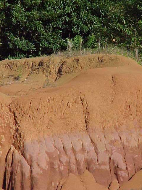Suelos venezolanos for Tipos de terreno