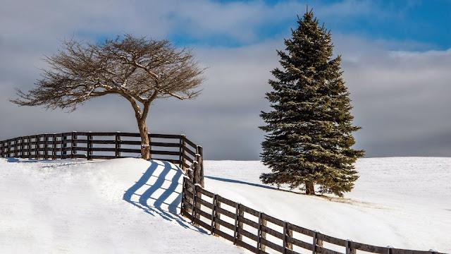 Fotos de Paisajes de Inverno en HD
