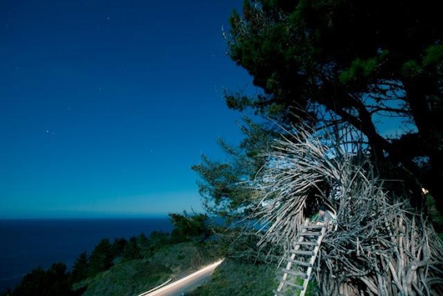 Big Sur Spirit Garden Home To Human Size Nests Facts Inform