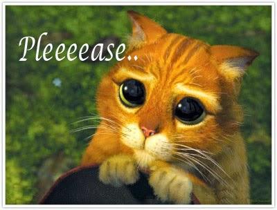 Please Cat