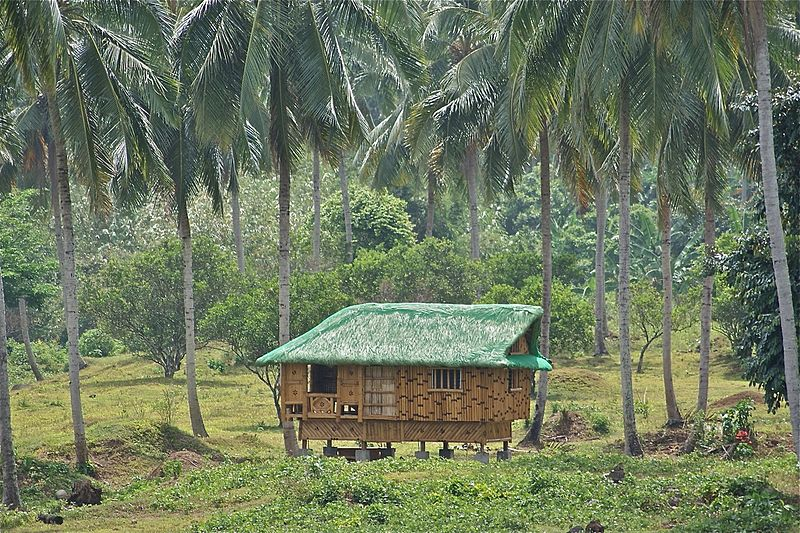 they were widely used before the spanish come, the nipa hut still used ...