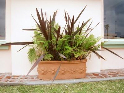 Garden Center Ejea Consejos A Tener En Cuenta Antes De
