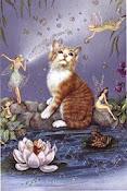 De Gatos y de Hadas