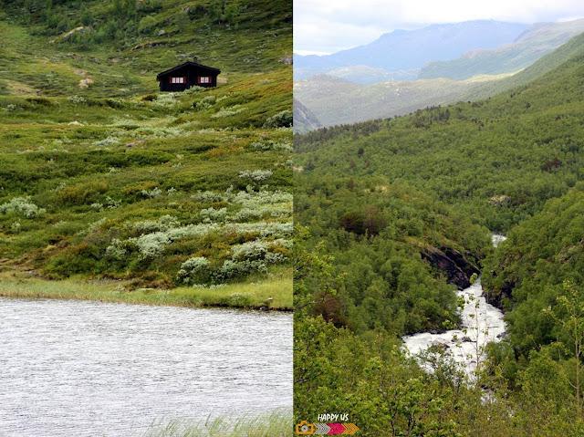 Massif du Jotunheimen - Route du Sognefjell - Norvège
