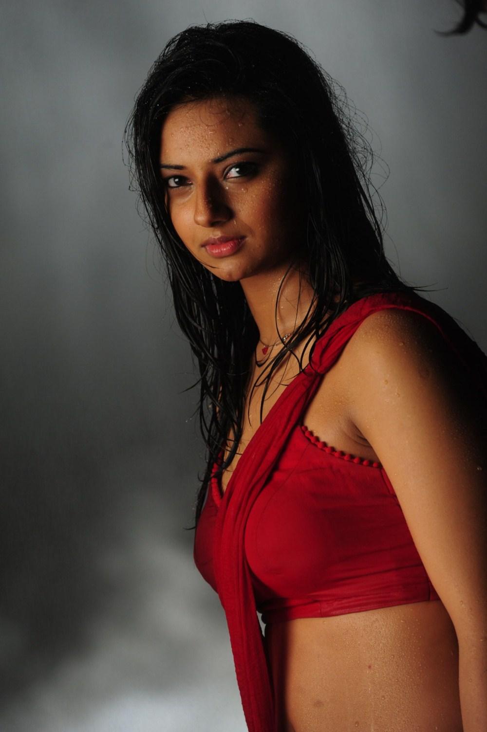 Actress hot in wet saree stills, photos | South Wood Gallery