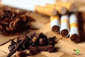 Asal-usul Rokok dan Sejarah Rokok Indonesia