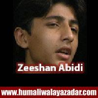 http://ishqehaider.blogspot.com/2013/11/zeeshan-abidi-nohay-2014.html