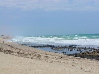Puerto Penasco tidepools