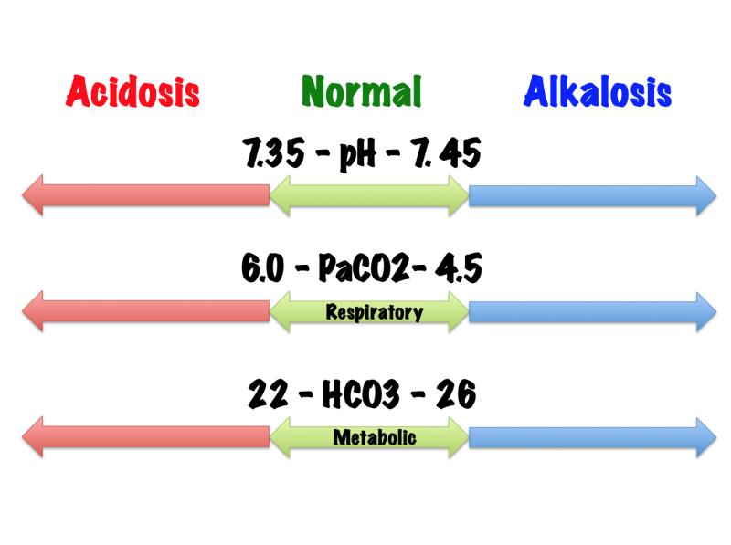 Interpretation of arterial blood gas
