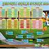 Jadwal Lengkap Piala Dunia 2014 Waktu Indonesia Barat