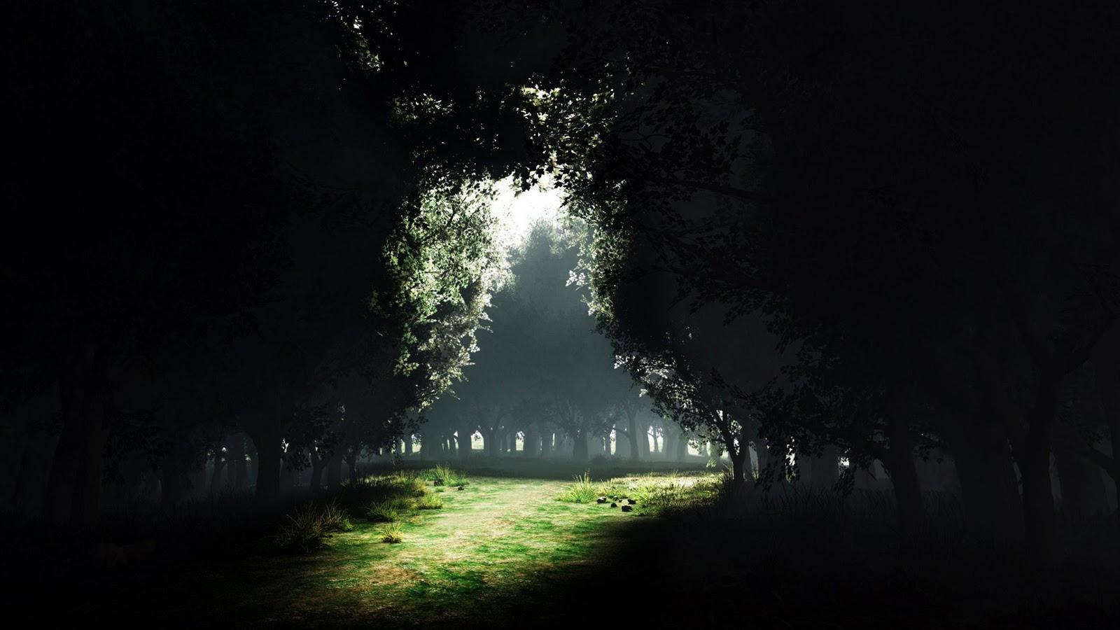http://2.bp.blogspot.com/-UHK7HCGPeoQ/TuMYZoJRsDI/AAAAAAAAFWA/dA8ZSOznCZ8/s1600/forest_glade_clearing-1920x1080.jpg