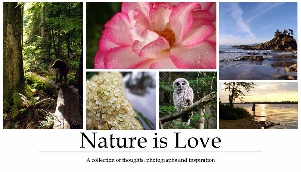 Nature is Love