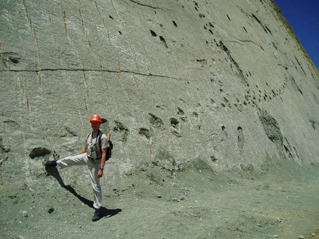 Bolivia Cal Orcko pared huellas de dinosaurio