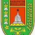 Standarisasi PPDB Kabupaten Magelan...