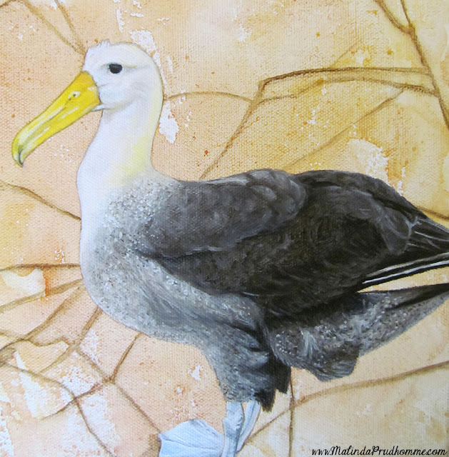 mixed media art, mixed media artist, travel artist, original artwork, original paintings, bird art, bird paintings, albatross painting