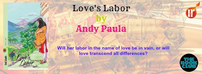 Tornado Giveaway: LOVE'S LABOR by Andy Paula