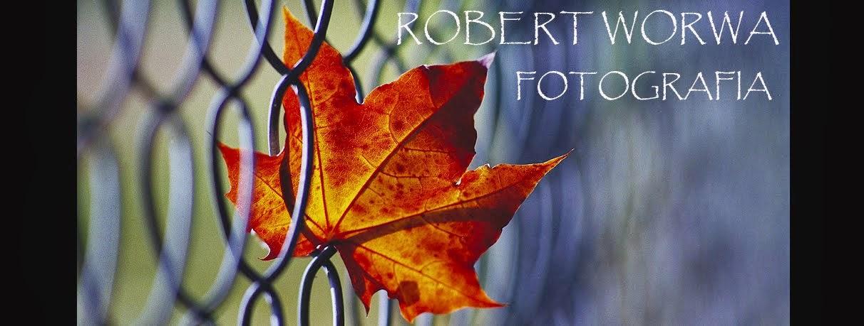Robert Worwa - fotografia