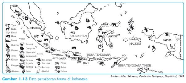 Peta Persebaran Hewan / fauna di Indonesia