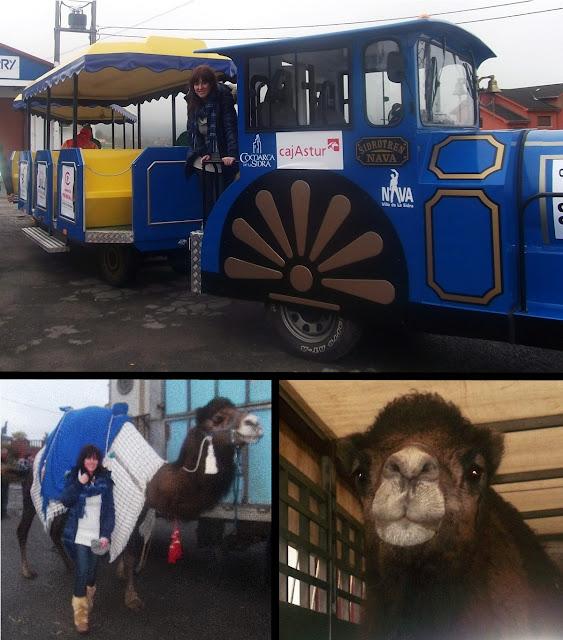 cabalgata principe aliatar tren camellos