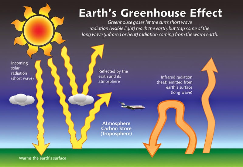 an introduction to the issue of the greenhouse effect Environmental issue - greenhouse effect introduction the greenhouse effect refers to circumstances where the short wavelengths of visible light from the sun pass.