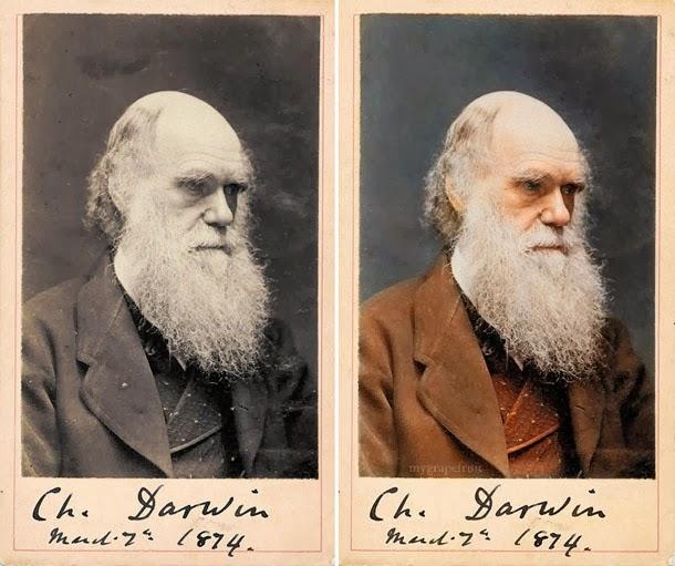 Charles Darwin - manipulação digital - Sanna Dullaway