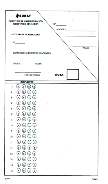 examen auxiliar despacho aduanero