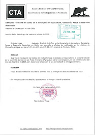 Preguntamos al Delegado Territorial en Cádiz de la Consejería de Agricultura, Ganadería, Pesca y De