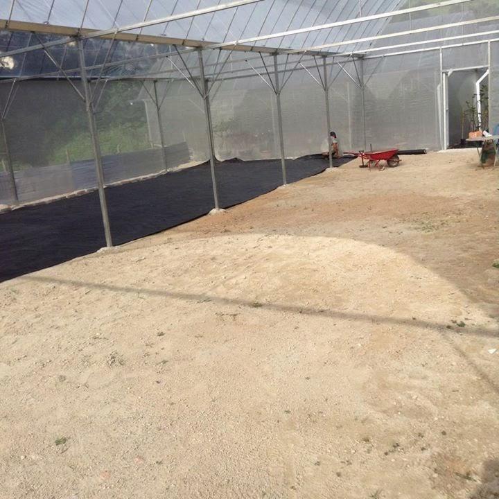 New Rain shelter house Dato Syed Elias (Figs Malaysia)