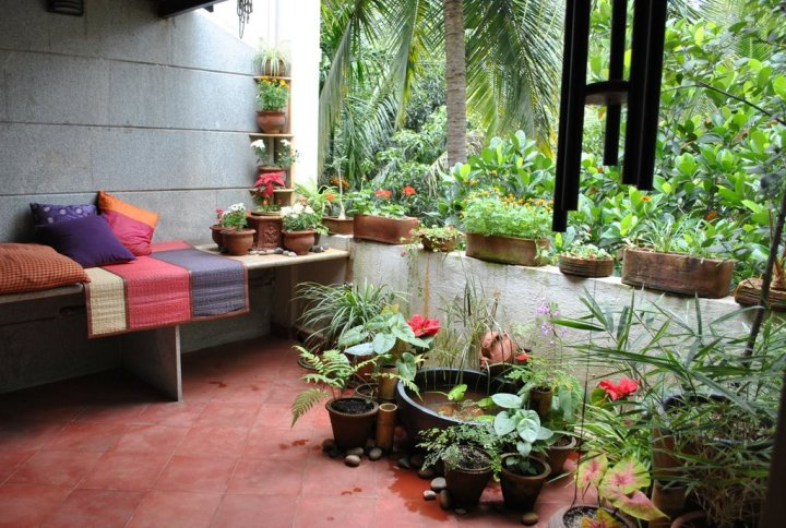 garden accessories stores bangalore   28 images   hybiscus
