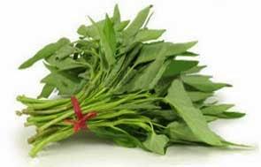 khasiat dan manfaat daun kangkung