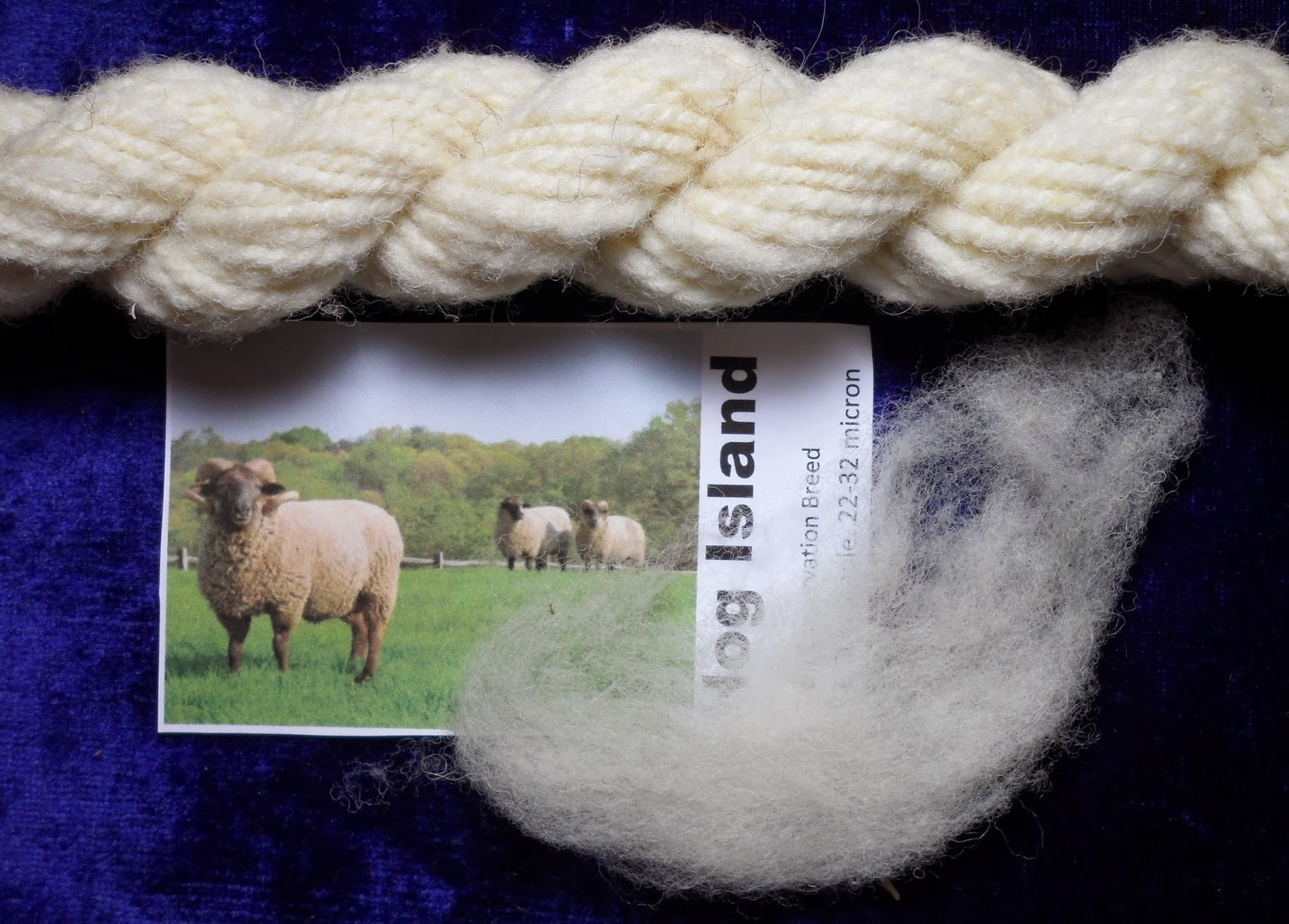 a flock of fleece