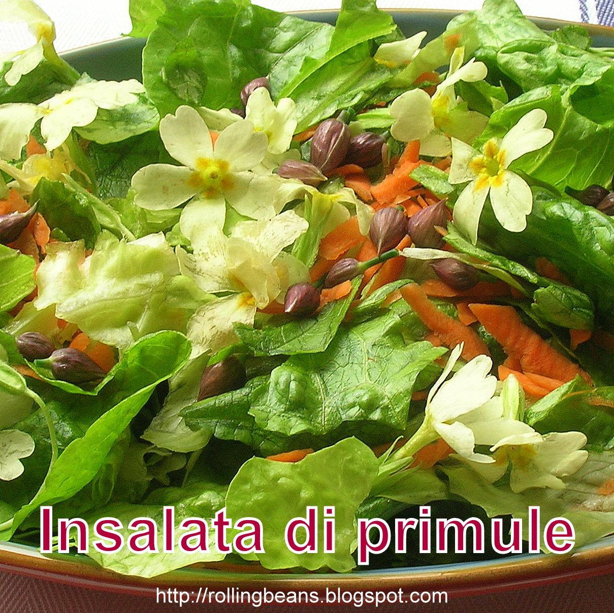 erbe commestibili: primula vulgaris