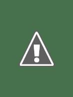 Khủng Long Đại Náo Los Angeles - Jurassic City