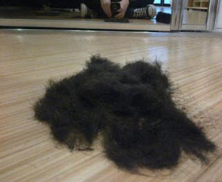 Greyson Chance new haircut shaved head feet