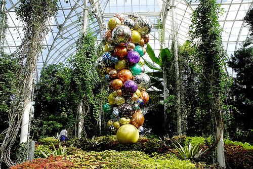 Riszky nurseno new york botanical garden the vacation - New york botanical garden promo code ...