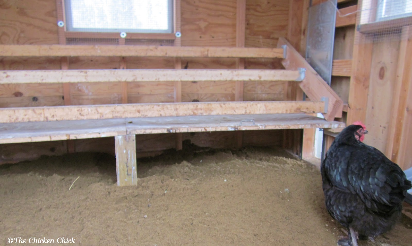 Inside Chicken House the chicken chick®: 5 tips for a cleaner coop with less effort