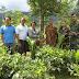 20.000 Ribu Bibit Gaharu Gratis Untuk Petani GSK Jawa Barat