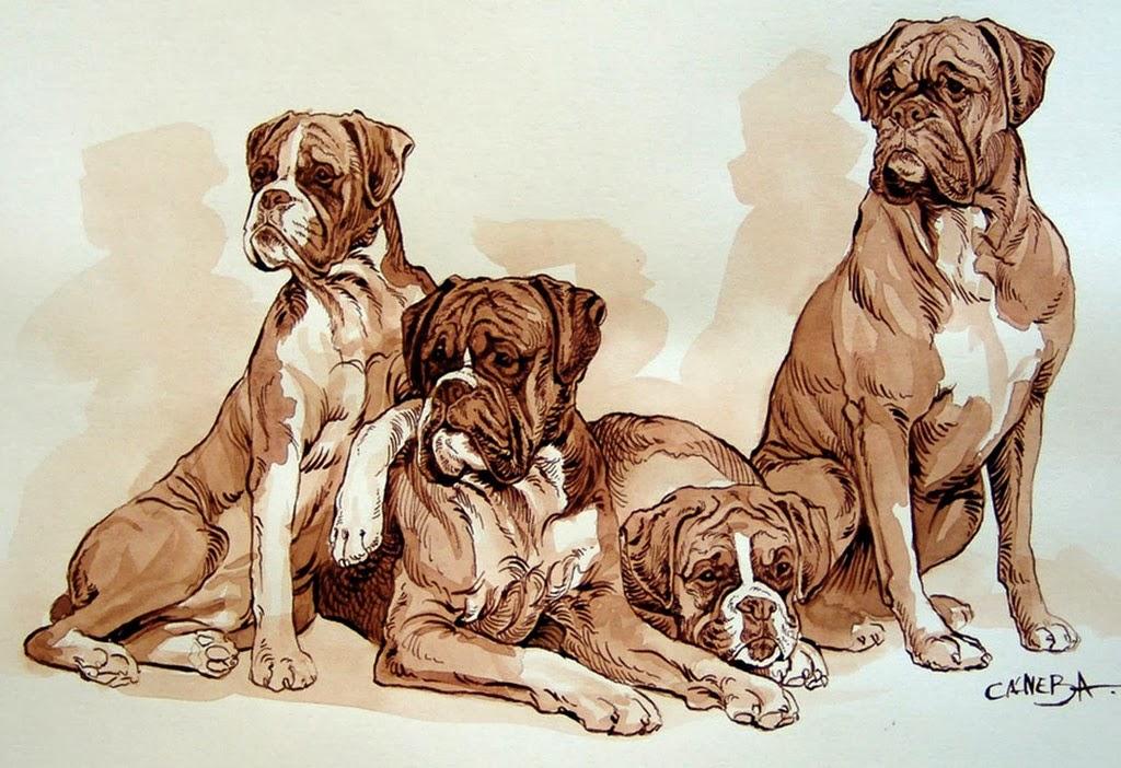 cuadros-de-perros-pintados