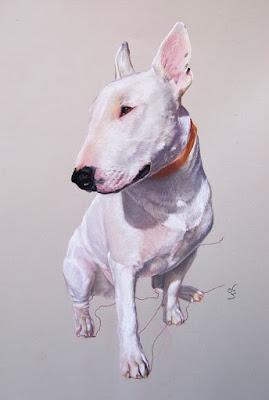 Retrato a pastel de un perro bull terrirer blanco