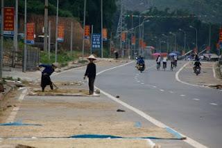 Secando el arroz en la carretera.