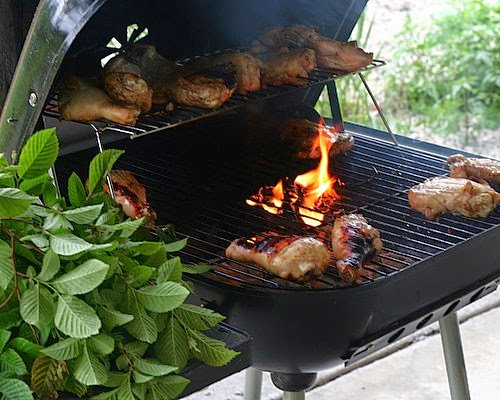 Grilled Balsamic Chicken, starts in oven, finished on the grill. A real crowd pleaser, serve hot, warm or chilled. Tips, nutrition, WW points at Kitchen Parade.