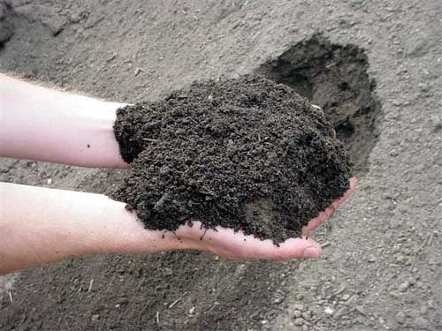 Bolta karachi agriculture tips types of pakistans soil for Organic soil meaning