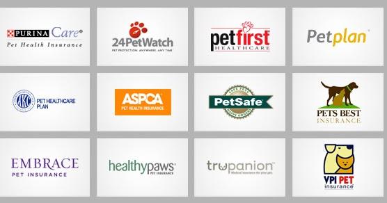 Pet Insurance Companies >> Pet Insurance Guide Pet Insurance Companies