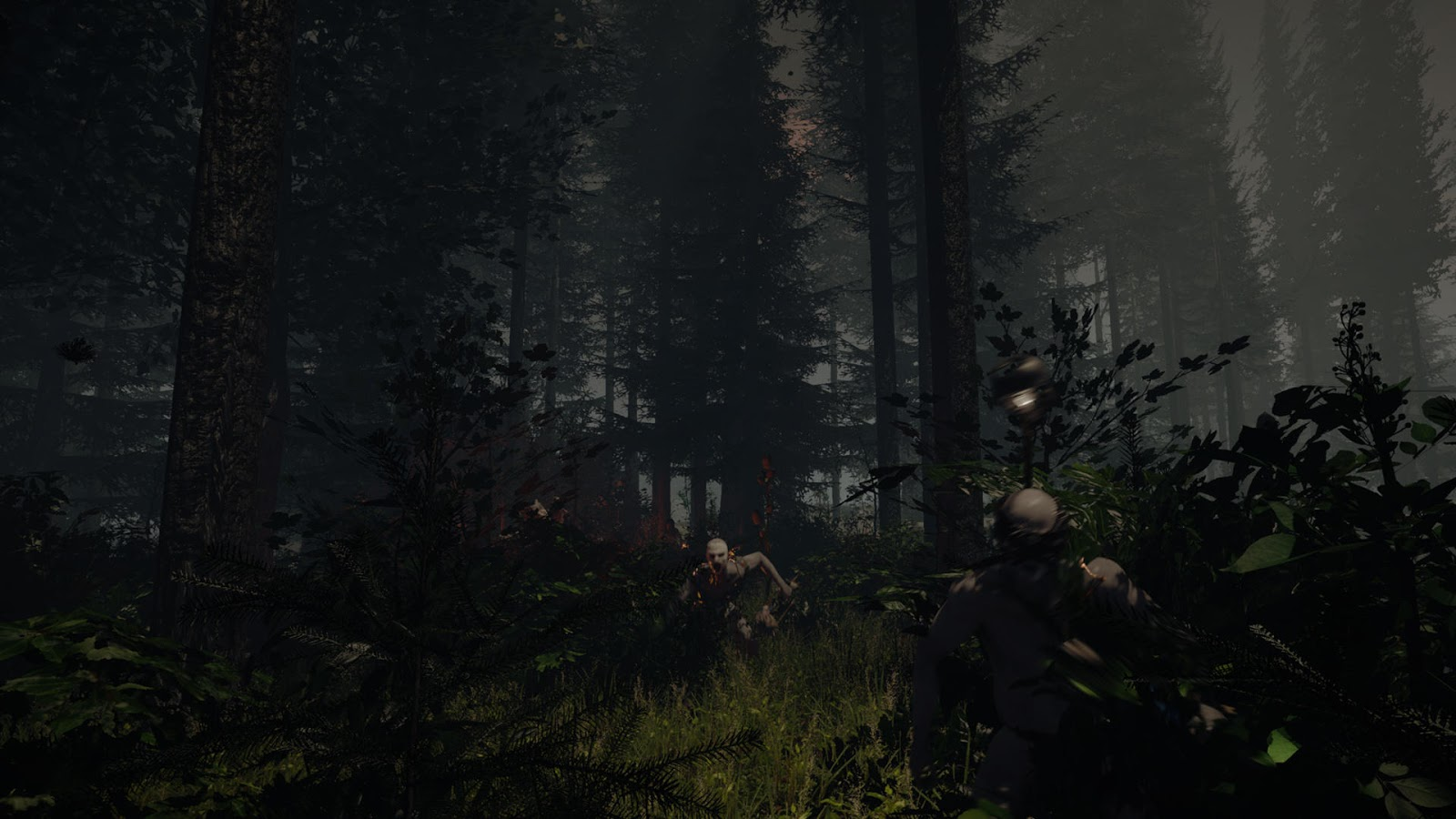 The Forest : New screenshots