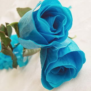 20 Seeds Chinese Bule Rose Seed For Lover Bule Rose Seed