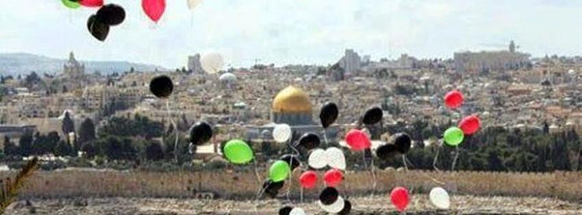 Couverture pour journal facebook palestine