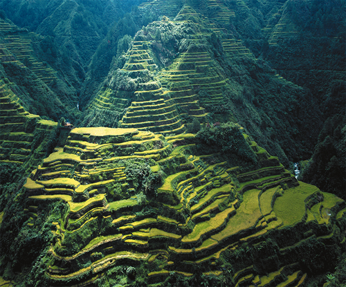 World visits famous place banaue rice terraces 2000 years for Terrace farming definition