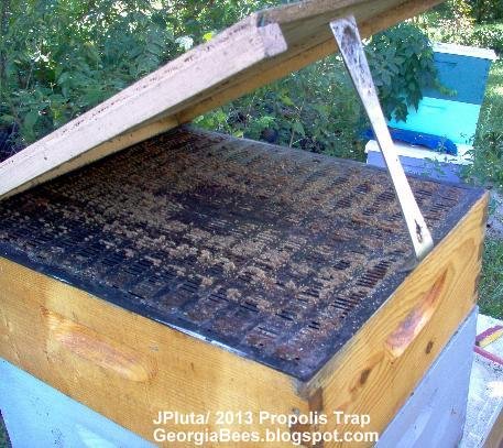 PROPOLIS TRAP On Honeybee Hive For Collection