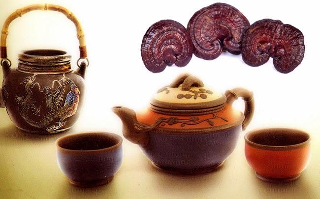 Bài thuốc mát gan giải độc từ nấm Linh Chi
